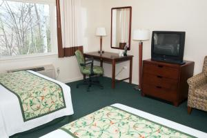 Scenic View Room 2 Queen Beds
