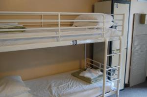 Single Bed in 10-Bed Male Dormitory Room