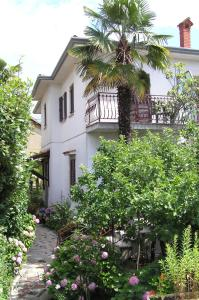 Photo of Guest House Ida