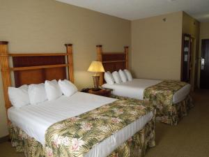 Queen Room with Two Queen Beds without Waterpark Pass