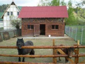 House with Ponies - Image1