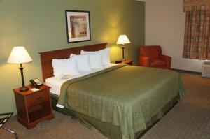 Quality Inn & Suites Near Fairgrounds & Ybor City, Hotels  Tampa - big - 7