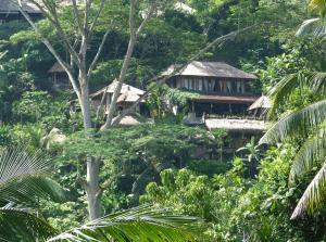 Photo of Green Spirit Villa