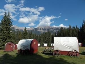 Covered Wagon with Double Bed and Shared Bathroom