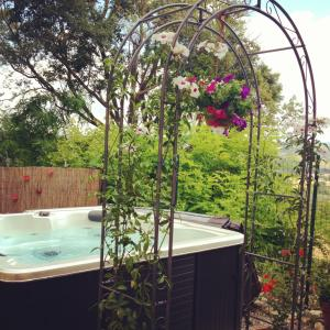 Le Tartarughe B&B, Bed & Breakfasts  Magliano in Toscana - big - 27