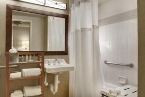 One-Bedroom Queen Suite with Tub - Disability Access/Non-Smoking