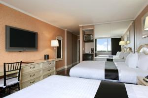 Executive Business Double Room