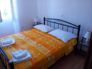Photo of Apartments Tudor Nikola