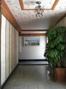 Photo of Busan Olive Motel