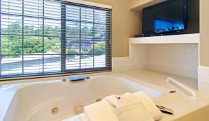 King Suite with Spa Bath - Pet Friendly