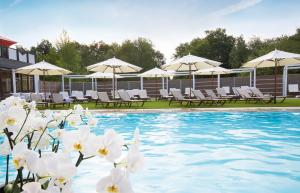 Land & Golf Hotel Stromberg, Hotels  Stromberg - big - 10