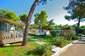 Photo of Camping Indije