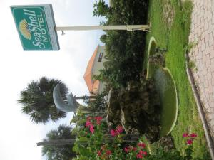 Photo of Sea Shell Motel
