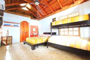 One-Bedroom Bungalow with Bunk Bed