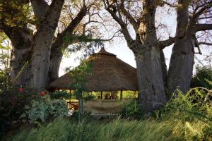Ol Mesera Tented Camp Guest House