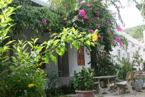 Photo of Duc Thao Guest House