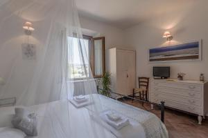 Le Tartarughe B&B, Bed & Breakfasts  Magliano in Toscana - big - 18