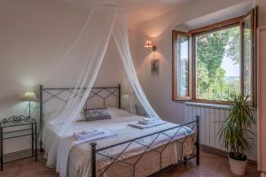 Le Tartarughe B&B, Bed & Breakfasts  Magliano in Toscana - big - 31
