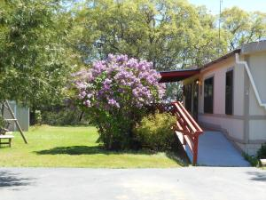 Three Bedroom House -  5150 Allred Road