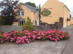 Photo of Marlinstown Court B&B