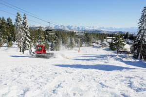Eagle Run by 101 Great Escapes, Ferienwohnungen  Mammoth Lakes - big - 2