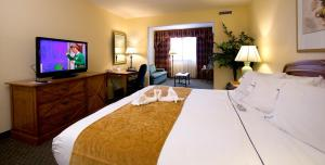 Deluxe King Suite with King Bed and Sleeper Sofa