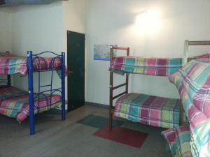 Single Bed in Mixed Dormitory Room with City View