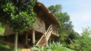 Tree Top Bungalows