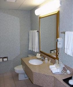 One-Bedroom with Roll in Shower - Non-Smoking