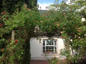 Photo of Culmore Cottage B&B