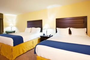 Holiday Inn Express Hotel & Suites Chicago South Lansing - Lansing, IL 60438 - Photo Album