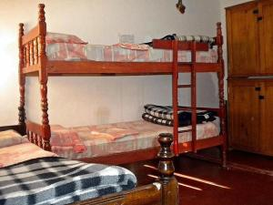 Bed in 5-Bed Dormitory Room