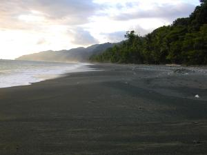 2 km north of Carate, 68203 Carate, Puntarenas Province, Costa Rica.