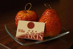 Vila Aris, Bed and breakfasts  Iaşi - big - 29