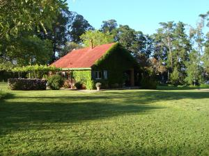 Bed & Breakfast Faraway Farm House