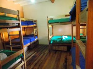 Bed in 13-Bed Dormitory Room with Shared Bathroom