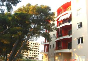 Photo of Guesthouse Albion