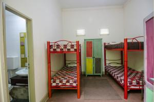 Single Bed in Mixed 6 Bed Dormitory Room