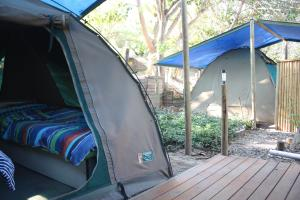 Dome Tent on Wooden Deck