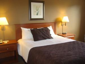 Family Suite with One Queen Bed and Bunk Bed
