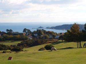 Somerfield Lodge, Bed and Breakfasts  Swansea - big - 24