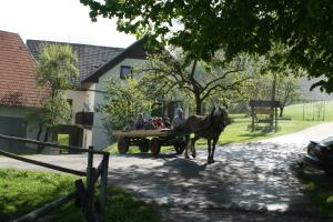 Photo of Tourist Farm Ljubica