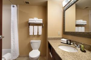 Deluxe King Suite with Roll-In Shower - Disability Access