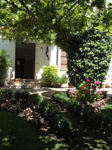 Photo of Spagna B&B
