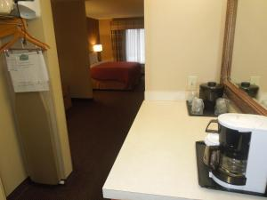 One-Bedroom King Suite - Accessible with Roll in Shower