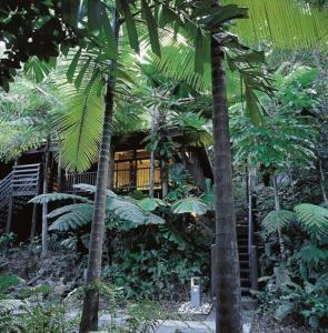 Cape Tribulation Resort & Spa