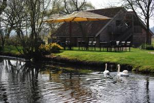 Tuddenham Mill - 10 of 24