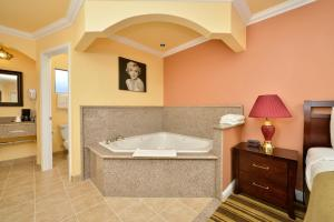 Non-Smoking One Bedroom Queen Jaccuzi Suite