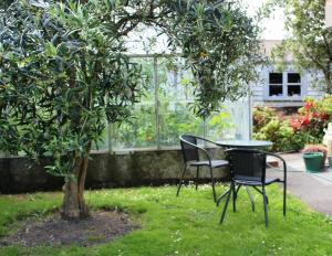 Photo of Olive Tree Bed & Breakfast