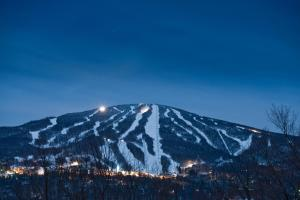 Photo of Vantage Point Condominium   Stratton Mountain Resort